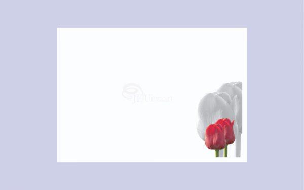Rouwkaart Tulp Schaduw Rouwcirculaire Kaart