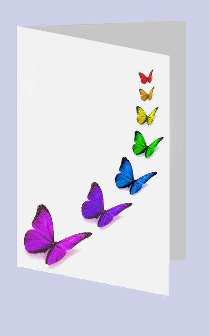 Rouwkaart regenboogvlinders Rouwcirculaire regenboog dankbetuiging