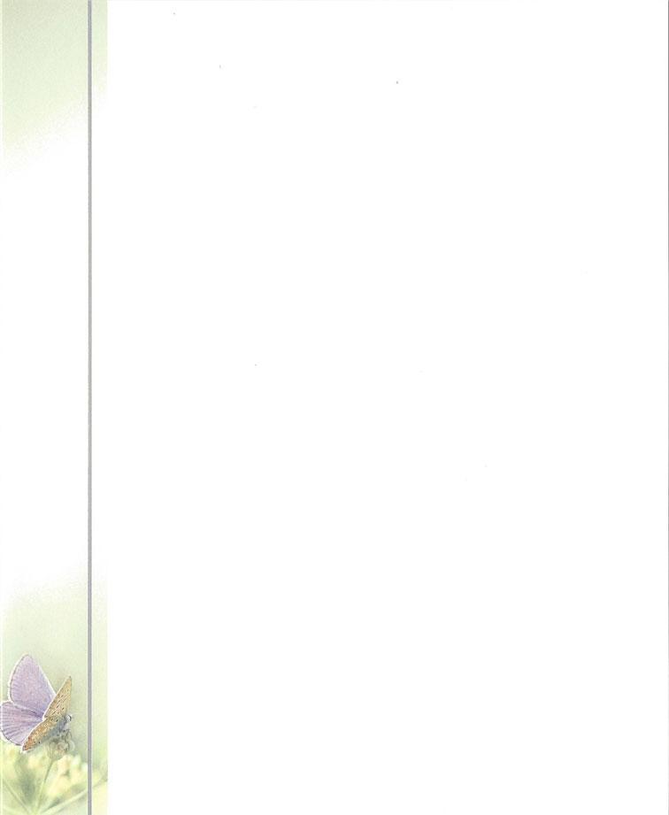 Vlinder paars in bies Rouwkaart Rouwcirculaire Dankbetuiging Rouwbrief